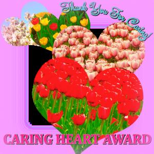 Caring Heart Award – Ψυχοπονιάρικο Βραβείο